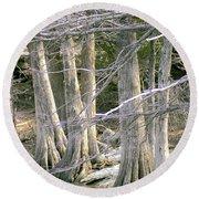 Cypress Trees Round Beach Towel