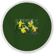 Daffies Round Beach Towel
