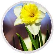 Daffodil Blossom Round Beach Towel
