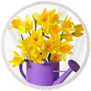 Daffodil Display Round Beach Towel by Amanda Elwell