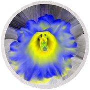 Daffodil Dreams - Photopower 1919 Round Beach Towel