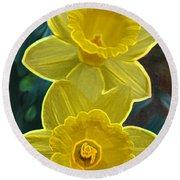 Daffodil Duet By Jrr Round Beach Towel