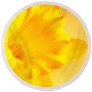 Daffodil Round Beach Towel