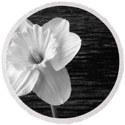 Daffodil Narcissus Flower Black And White Round Beach Towel