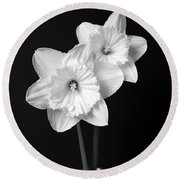 Daffodil Flowers Black And White Round Beach Towel