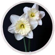 Daffodil Flowers Still Life Round Beach Towel