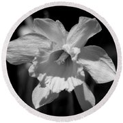 Daffodil In Black And White Round Beach Towel