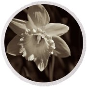 Daffodil In Black And White Round Beach Towel