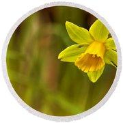 Daffodil - No. 1 Round Beach Towel