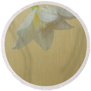 Daffodil On Yellow Round Beach Towel