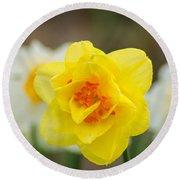 Daffodil Standout Round Beach Towel