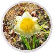 Daffodil Under Water Round Beach Towel