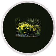 Daffodils And Bluebells Round Beach Towel
