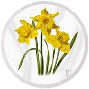 Daffodils Round Beach Towel