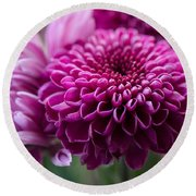 Dahlia And Mums Round Beach Towel