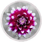 Dahlia Flower 2 Round Beach Towel