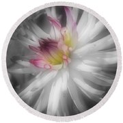 Dahlia Flower Splendor Round Beach Towel
