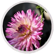 Dahlia Generations Round Beach Towel
