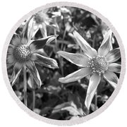 Dahlia Named Amy's Star Round Beach Towel