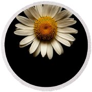 Daisies Are Not Flowers No Text Round Beach Towel