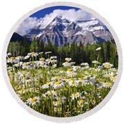 Daisies At Mount Robson Round Beach Towel by Elena Elisseeva