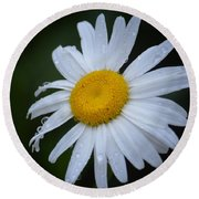 Daisy 14-3 Round Beach Towel