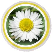 Daisy Closeup Round Beach Towel