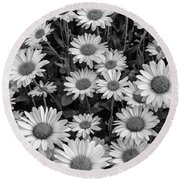 Daisy Cluster Vermont Flowers In Black And White Round Beach Towel