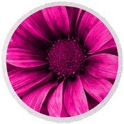 Daisy Daisy Neon Pink Round Beach Towel