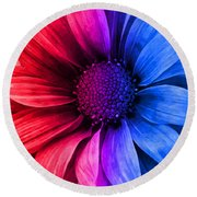 Daisy Daisy Red To Blue Round Beach Towel
