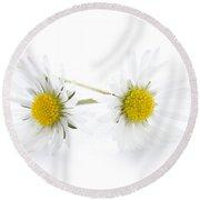 Daisy Flowers Isolated Round Beach Towel