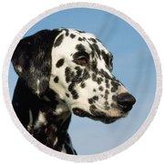 Dalmatian Dog Round Beach Towel