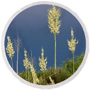 Dance Of The Yucca Round Beach Towel