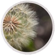 Dandelion Art - So It Begins - By Sharon Cummings Round Beach Towel