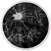 Dandelion Burst Round Beach Towel