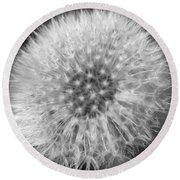 Dandelion Fluff In Black And White Round Beach Towel