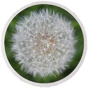Dandelion Marco Abstract Round Beach Towel