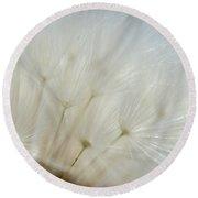 Dandelion Seed Head Macro II Round Beach Towel