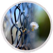 Dandelion Wish Round Beach Towel