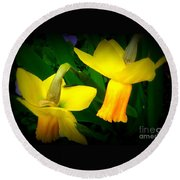 Dangling Daffodils Round Beach Towel