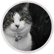 Dare To Look Into My Green Eyes Round Beach Towel