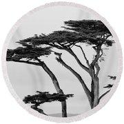 Dark Cypress Round Beach Towel