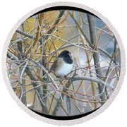 Dark- Eyed Junco Round Beach Towel