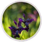 Dark Irises Round Beach Towel
