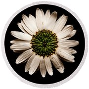 Dark Side Of A Daisy Square Round Beach Towel