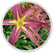 Dark Star Daylilies Round Beach Towel