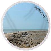 Fannie Bay 1.7 Round Beach Towel