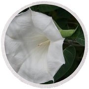 Datura Round Beach Towel