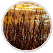 Dawn's Early Light Round Beach Towel by Karen Wiles