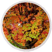Day Glo Autumn Round Beach Towel